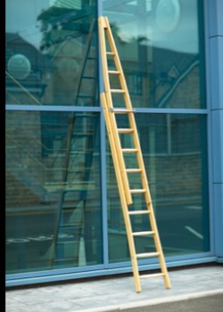Timber Window Cleaners Ladder-Two Section