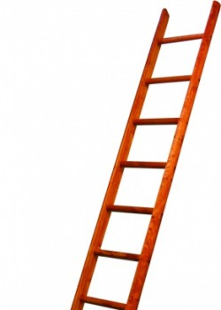 Heavy Duty Timber Pole Ladders