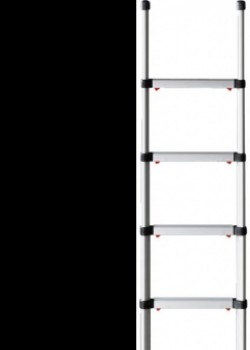 Telesteps Pro Telescopic Ladder